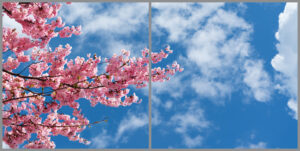 2-panel window with blue skies, white clouds and pink blossom