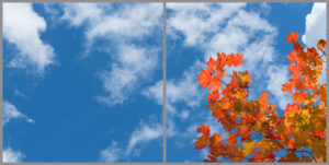 2-panel window with blue skies, white clouds and red and orange leaves