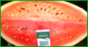 Seedless watermelon with seeds Jonar Nader