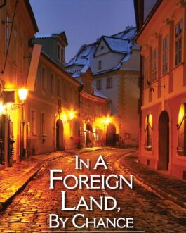 In a Foreign Land, by Chance – Soma Das