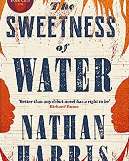 The Sweetness of Water – Nathan Harris