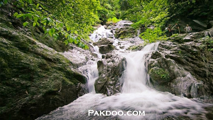 If you want best places to visit in kerala visit Pakddo.com