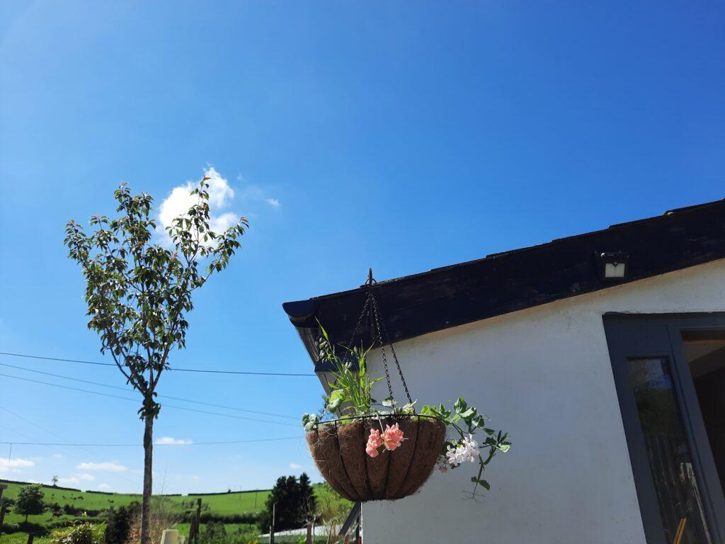 Clear blue, spring skies
