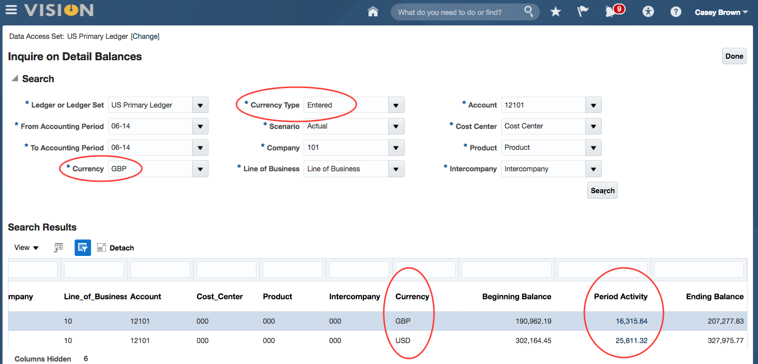 Oracle ERP Cloud Foreign Currency Balances2