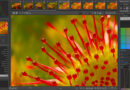 Open Source RAW Photo Editor RawTherapee Gets New Version v5.8- Recovers Lens Blur Distortion