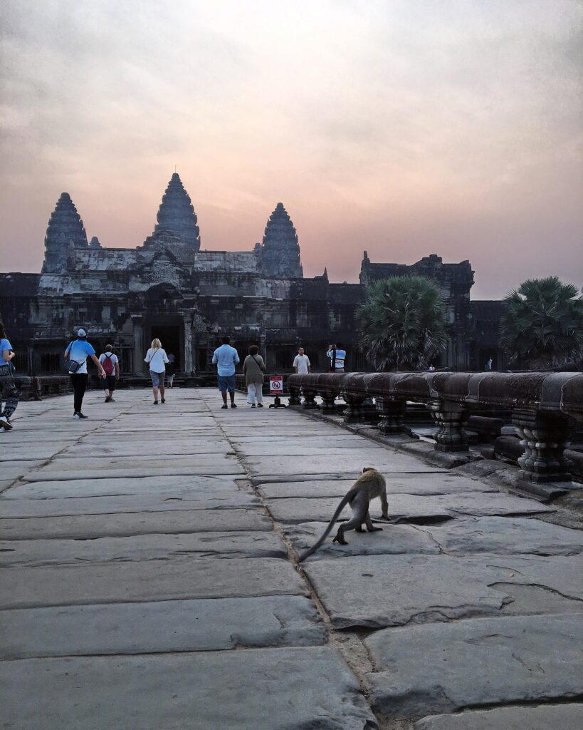 sunrise angkor wat camboya