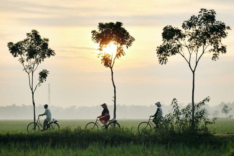 5 películas para viajar a Asia desde casa