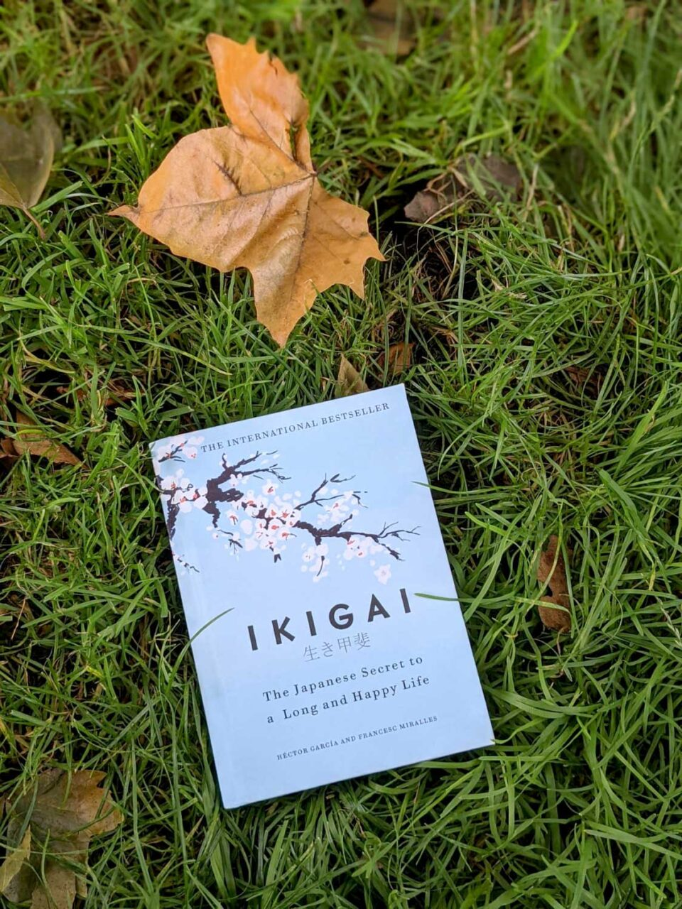 Ikigai-the japanese secret to a long and happy life