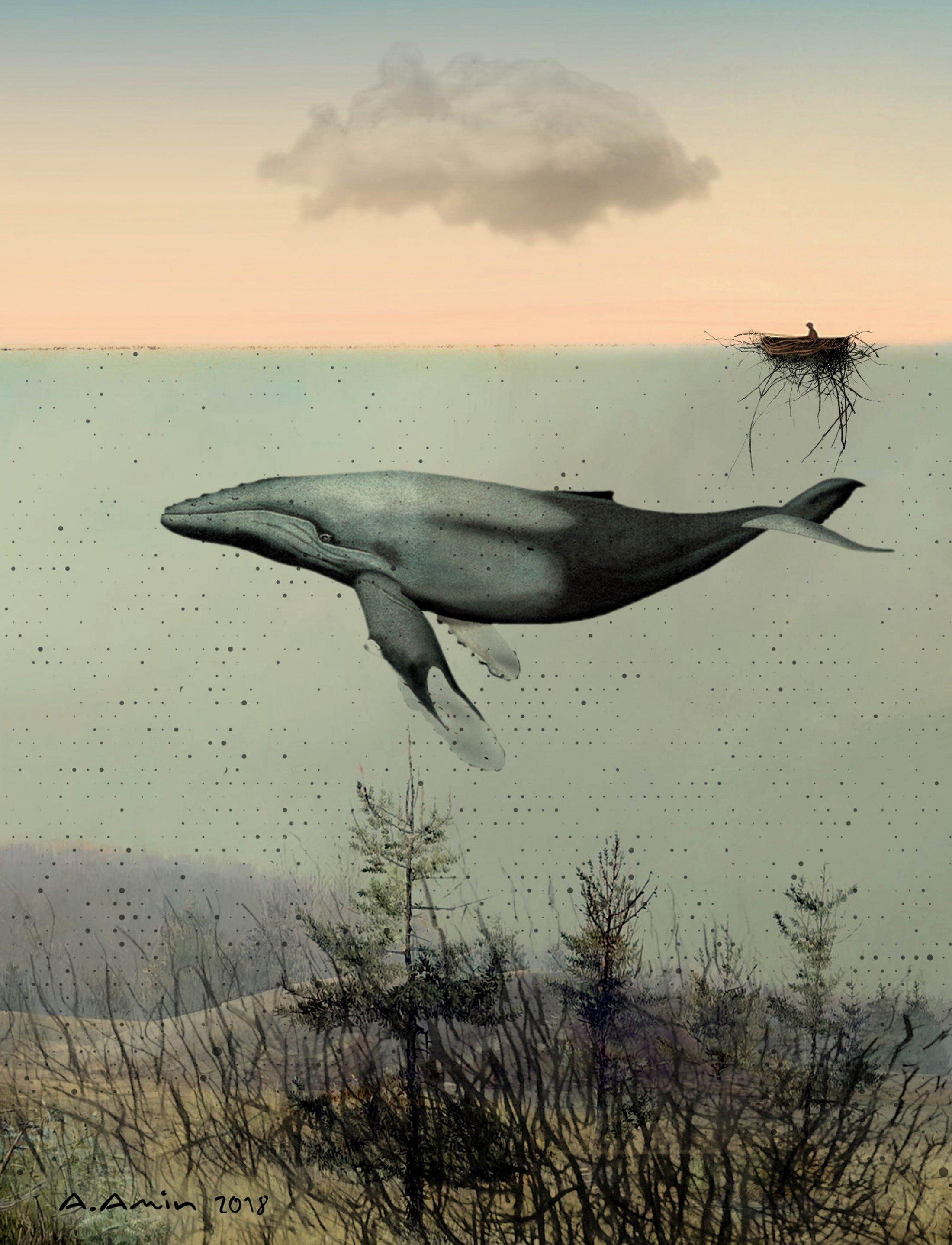 "By Amanj Amin, ""Whale"""