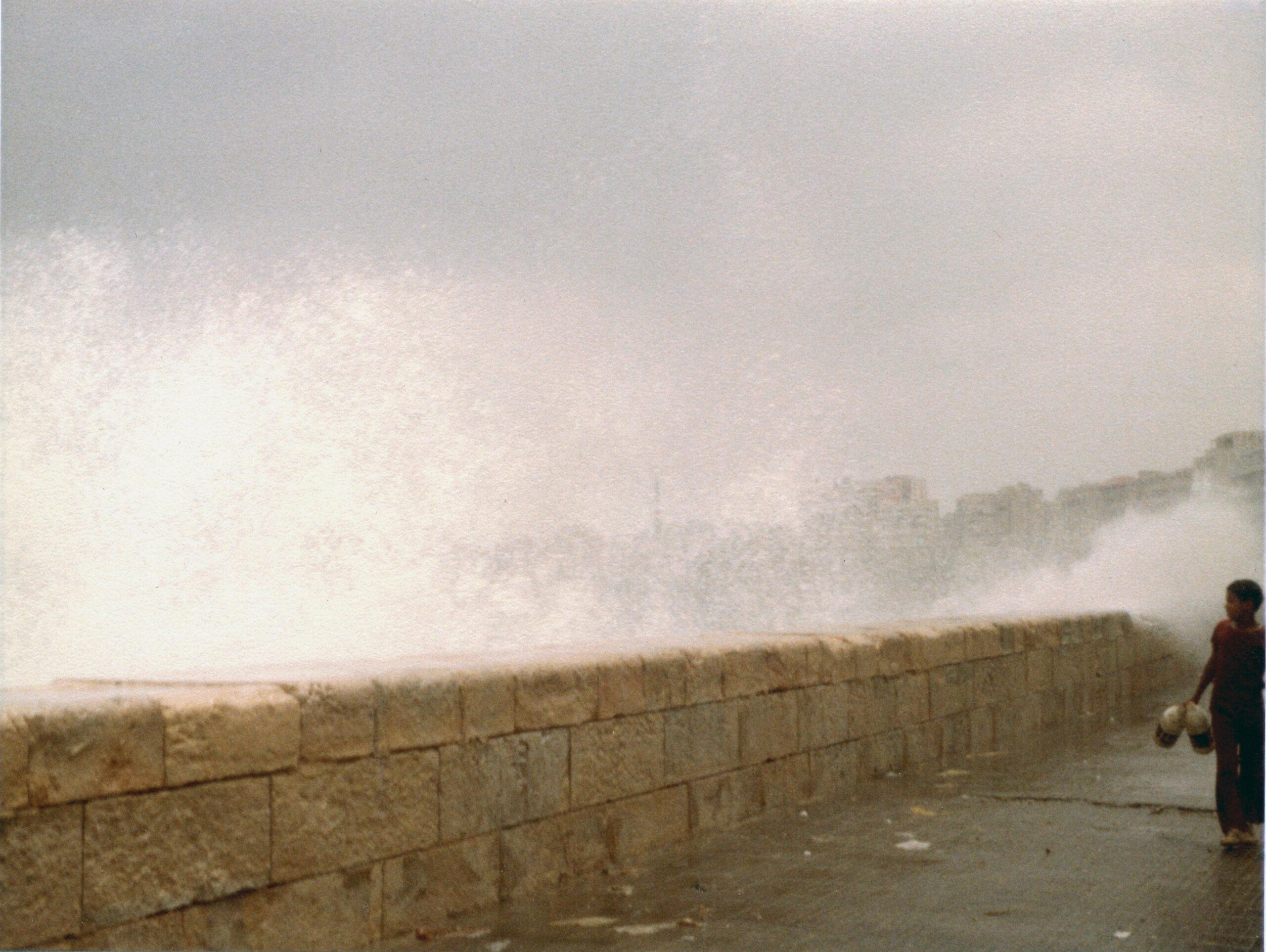 """""""Alexandria, July 1981"""" by Joy Amina Garnett"""