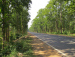 Around Joypur