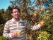 Orange orchard at Rangbang