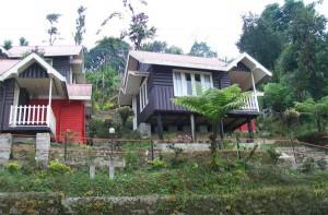 Loleygaon Resort