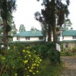Selim Hill Tea Bungalow