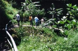 Nature walk from Mankhim to Lampokhri