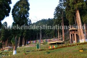 Lamahatta Park near Bees Gaon
