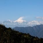 Yakten in East Sikkim
