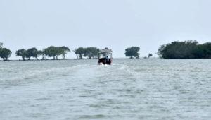 Boating at Kharibil, Odisha