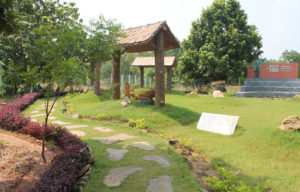 Amkhoi - Wood Fossil park
