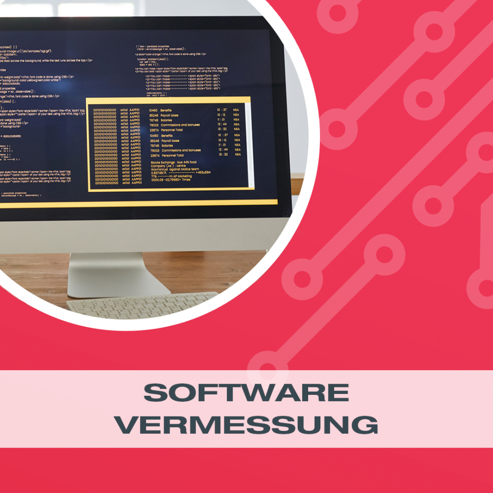 Software-Vermessung