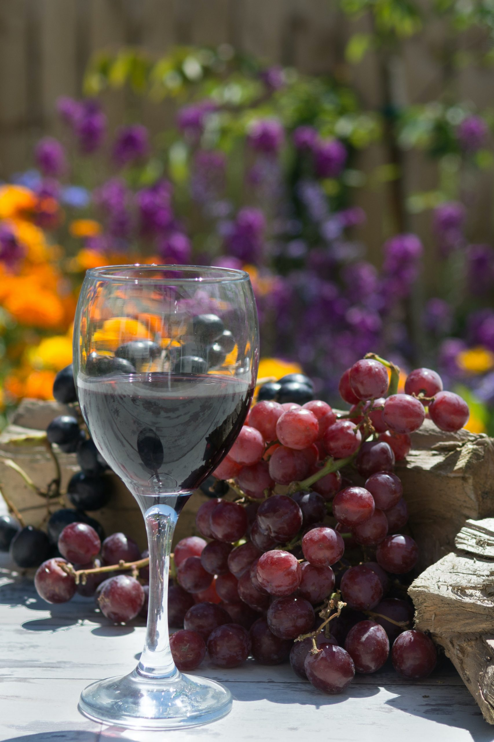Featured Image - Top 5 Destinations for Wine Lovers