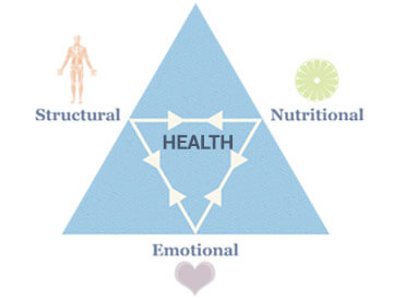 Triangle of Health
