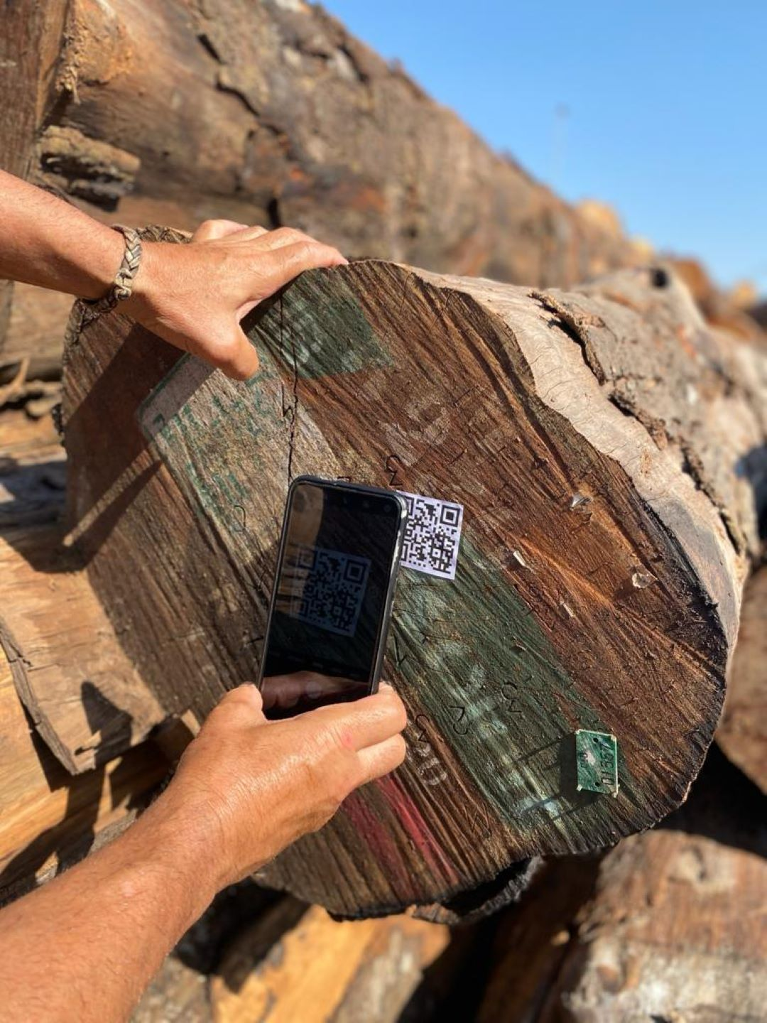 Digital Passport for wood traceability
