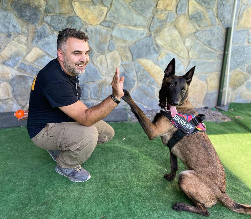 En İyi Köpek temel itaat eğitimi komutları, Köpek temel itaat eğitimi komutları, Temel itaat eğitimi kaç aylık, Temel itaat eğitimi nedir, İleri itaat eğitimi, Temel itaat Eğitimi fiyatı, Temel itaat eğitimi Ne kadar sürer, Terrier köpek itaat eğitimi, Husky temel itaat eğitimi, İstanbul En İyi Köpek Eğitim Merkezleri