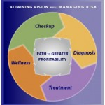 risk assessment to uncover opportunities to accelerate and risk to minimize