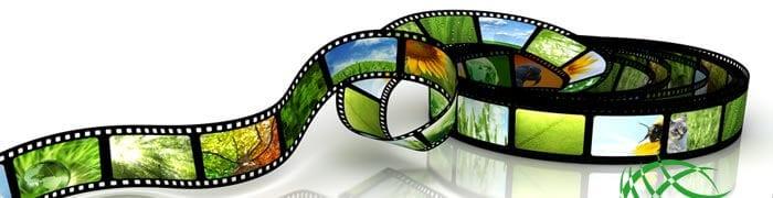 Videos, Videos, Fresh Entertainments