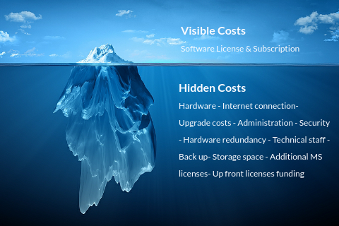 Software licensing cost iceberg