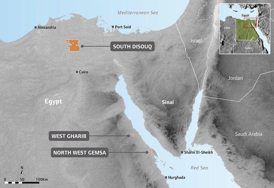 SDX Egypt