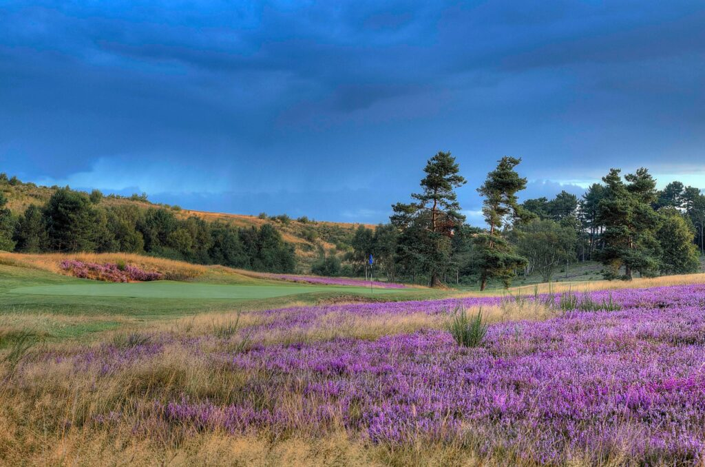 Sherwood Forest Golf Club - as recommended by Your Golfer Magazine - main pic