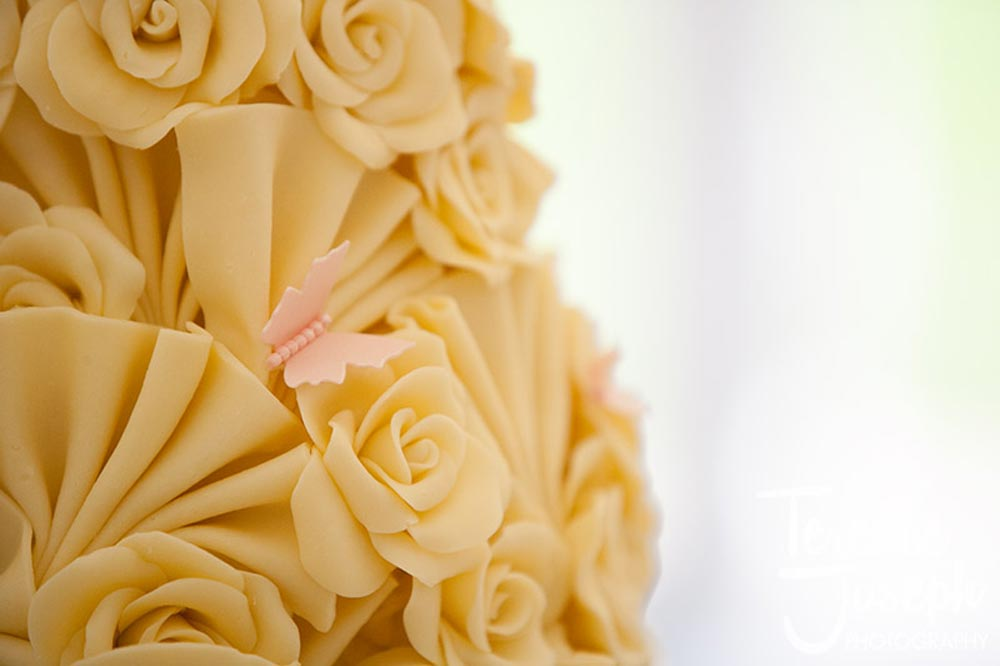 Trunkwell House Wedding Marquee