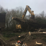 Tree clearance with excavator and grab