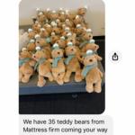 Ride On Teddy Bears
