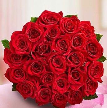 Fresh Rose Bouquets