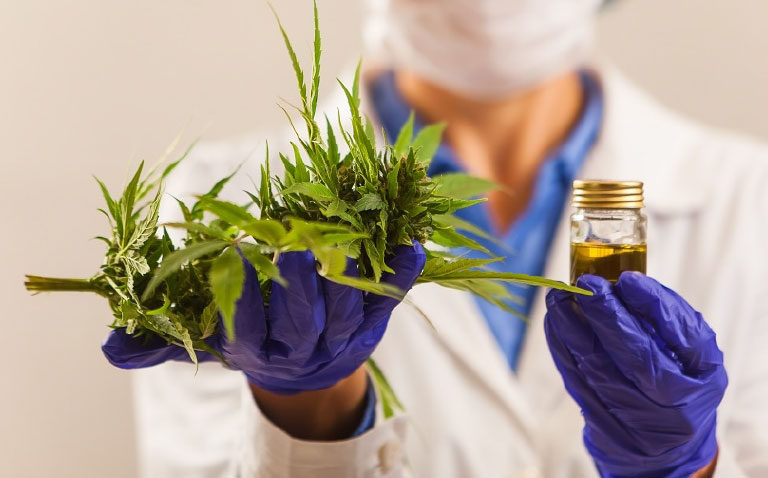 A scientific approach to cannabis consulting