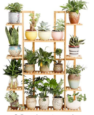 The Best Plant Stands for Tiny Spaces