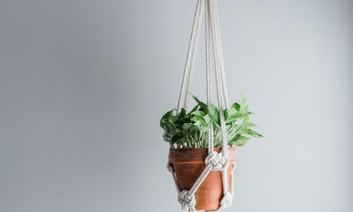 The Best Macramé Plant Hanger Kit for Beginners