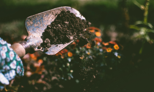 How to Test Your Garden Soil Acidity
