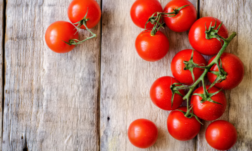Growing Tomatoes on a Balcony – A Complete Guide