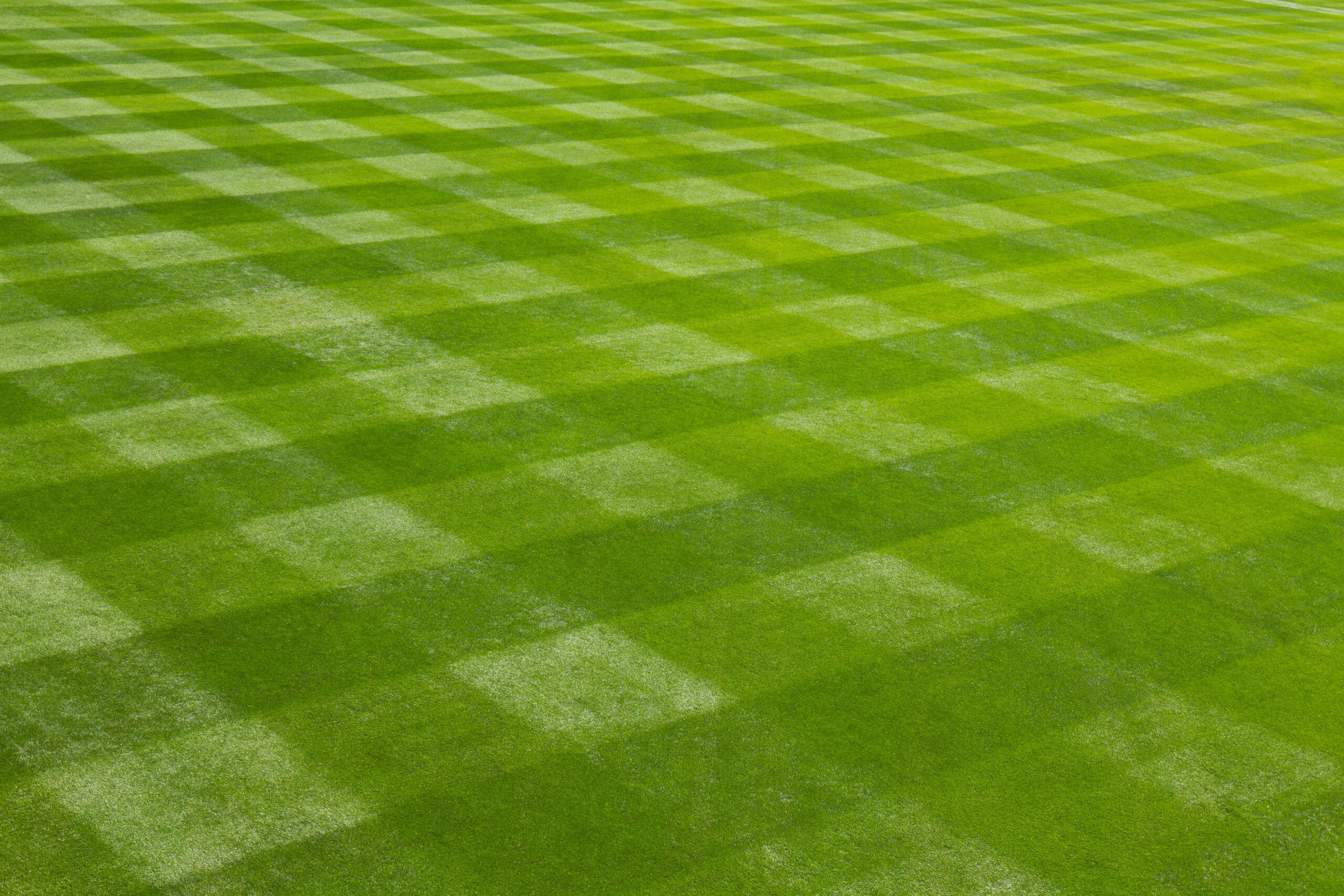 Perfect cross hatching marks a well managed grass field in a baseball stadium.