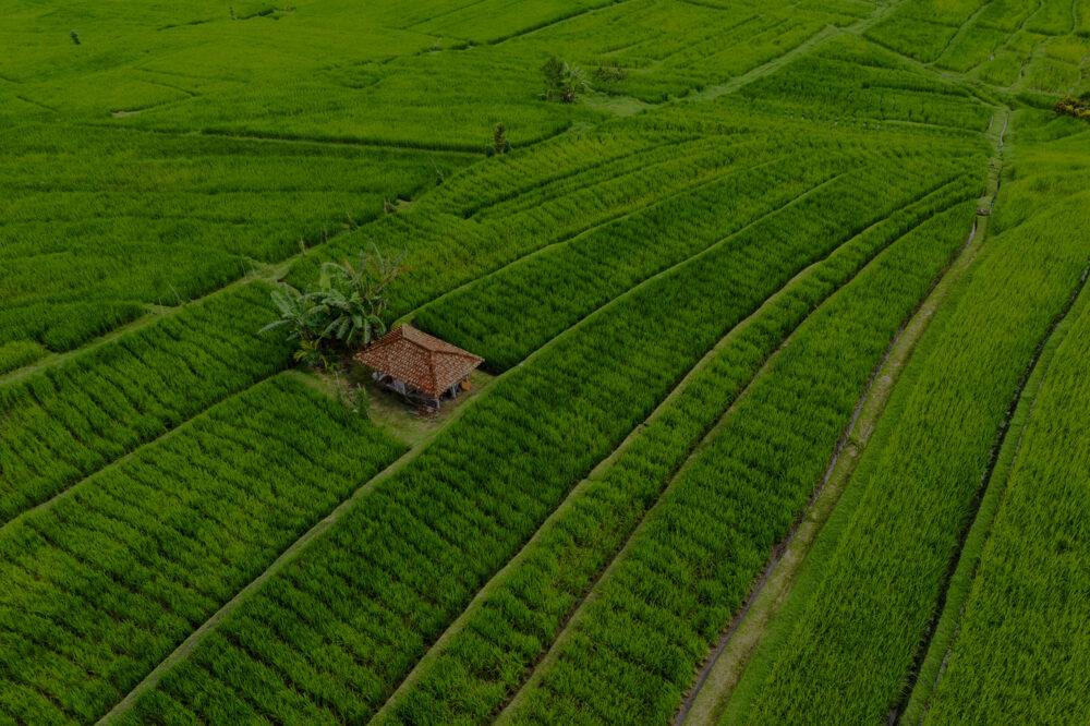 Home aerial of delta 8 grow farm drk e1609547166975