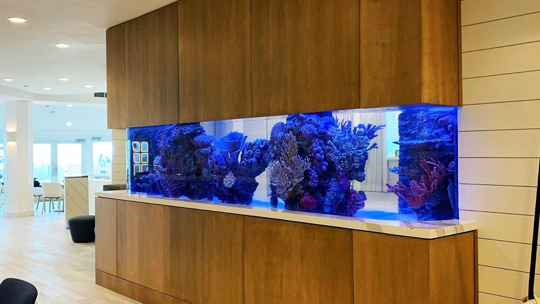 Aquarium at Outer Reef Restaurant