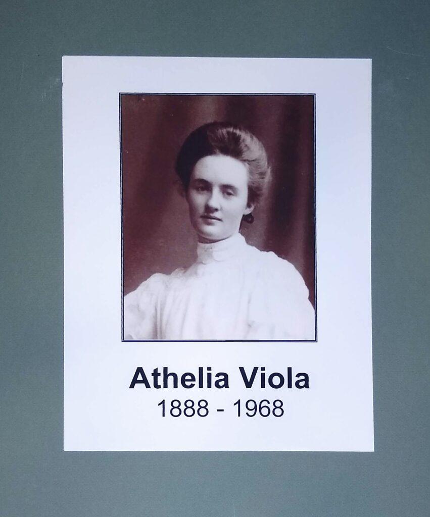 Athelia Viola