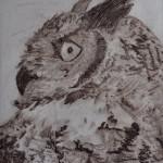 Horned Owl, Drypoint