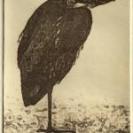 Winter Heron (solar plate etching)