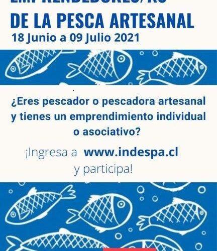 Indespa lanza primera consulta para caracterizar emprendimientos en la pesca artesanal