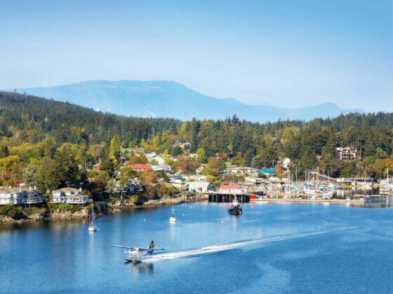 Ultimate Guide to Vancouver Island